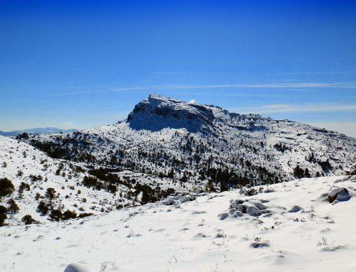 Alquila un coche en Alicante y descubre la belleza de Sierra Mariola